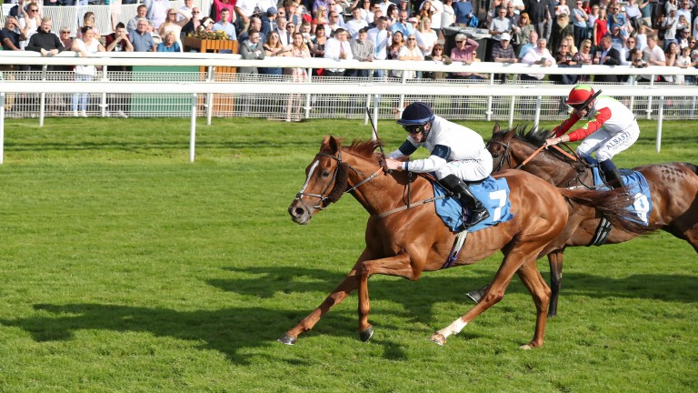 Platform Nineteen, pictured winning at York in 2019, returned in style this month after a long layoff