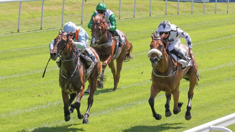 Misty Ayr just fends of the challenge of Lady Raeburn to land a first win