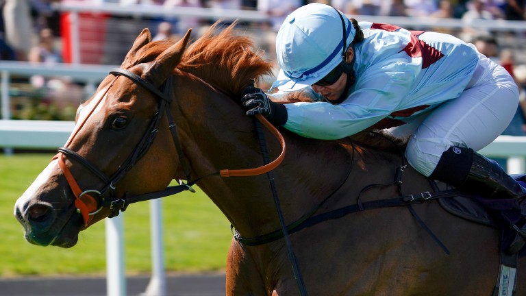 Under Curfew and Mollie Phillips team up for victory at Chepstow