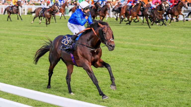 Real World: emphatic winner of the Royal Hunt Cup