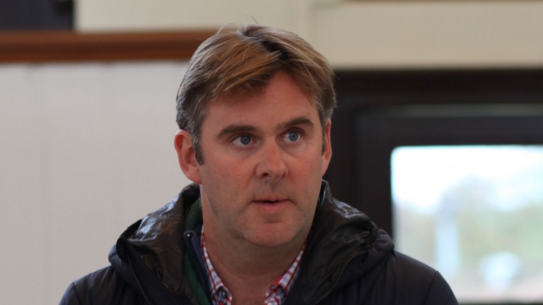"""Alastair Donald: """"It's going great for Cotai Glory and there's plenty more to run too"""""""