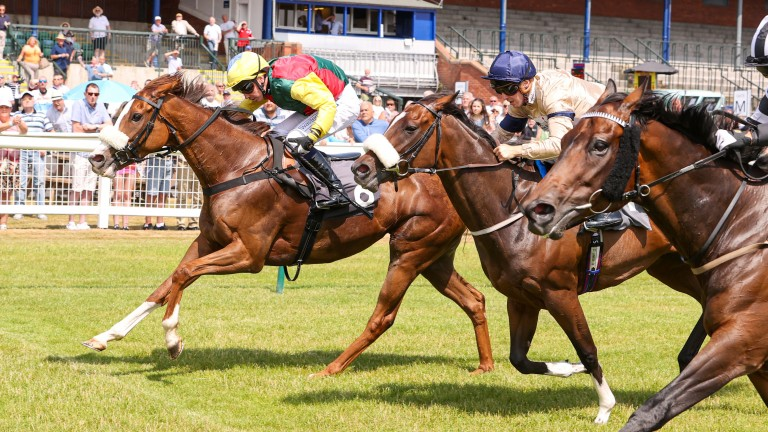 Amazing Alba just gets up in a photo-finish ahead of Global Humor (nearside) and Roman Encounter (centre)