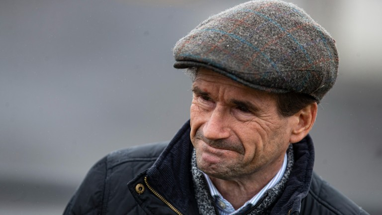 Michael O'Meara: registered his first winner as a trainer last season with Noble Music at Roscommon