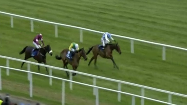 Hot favourite Killultagh Vic begans to motor down the inside under a power-packed Walsh