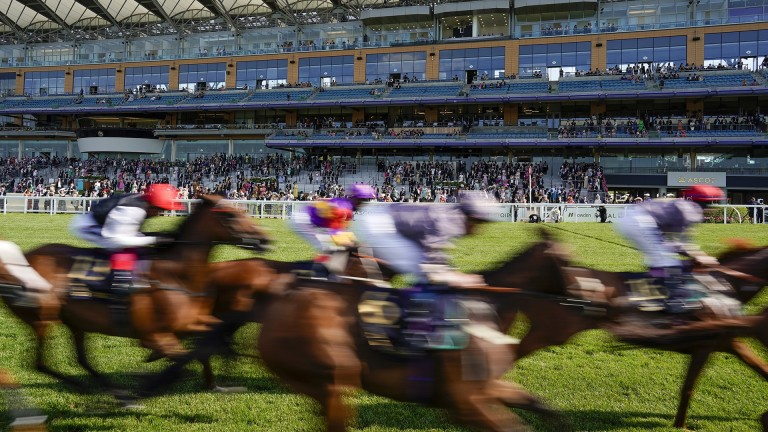 The Panorama documentary has raised several questions racing must answer