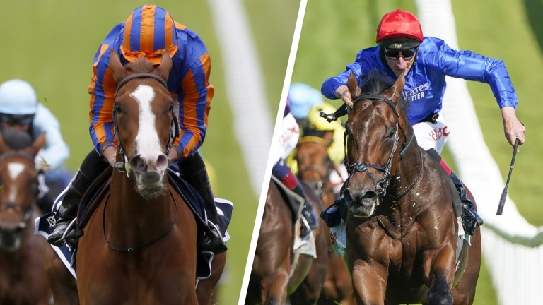 Love and Adayar will face off in a fascinating King George clash
