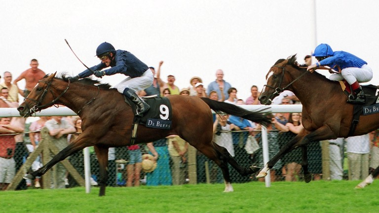 Galileo denies Fantastic Light after an epic duel in the 2001 King George