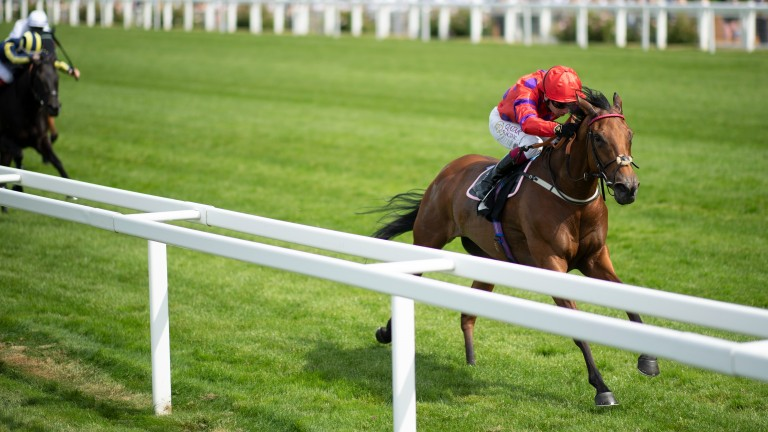 Dreamloper: stretched clear of her rivals under Oisin Murphy