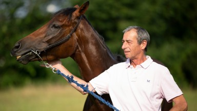 The Lady is a champ: William Jarvis looks admiringly at the feisty mare who has brought big-race excitement back to his yard