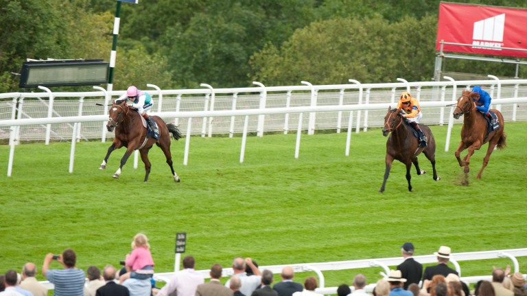 Canford Cliffs is well beaten by Frankel in the 2011 Sussex Stakes, which was his final race