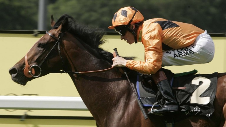 Richard Hughes was always confident Canford Cliffs would step up to a mile at three
