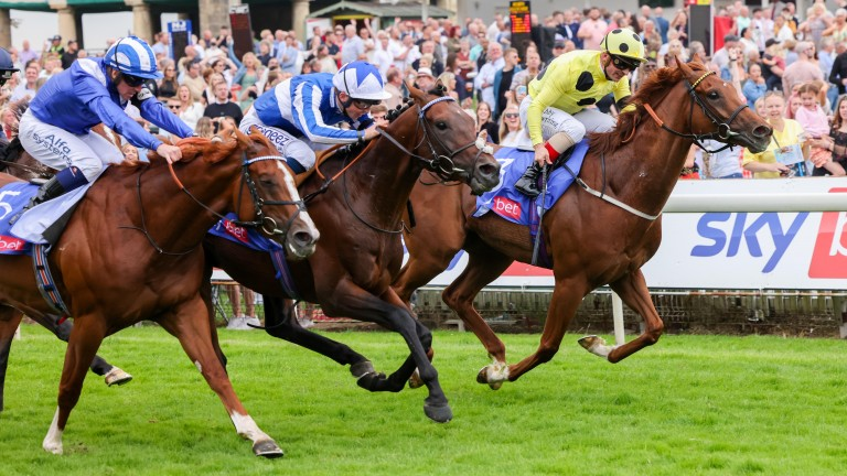 Bangkok (centre) holds off Juan Elcano and Mohaafeth to win the Sky Bet York Stakes