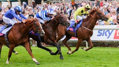 Bangkok and David Probert (centre) hold off Mohaafeth and Juan Elcano to win the Sky Bet York Stakes
