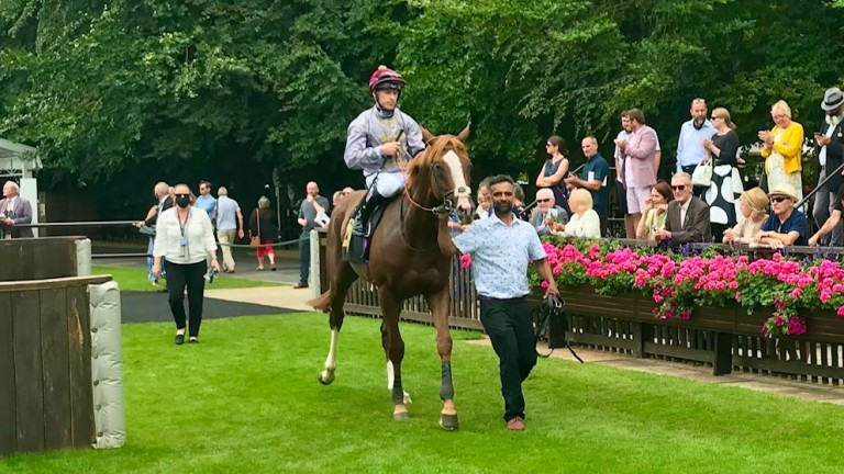 Wahraan is led back in after winning on Newmarket's July course