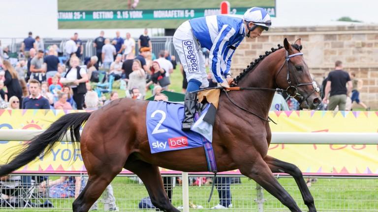 Bangkok: the York Stakes winner continued the hot form of jockey David Probert