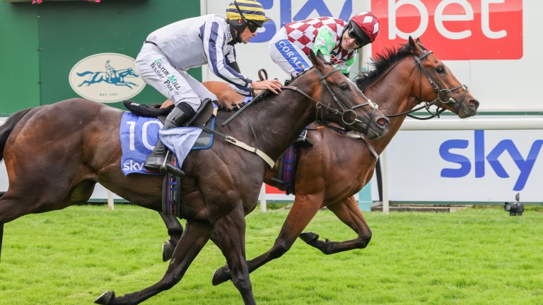 Son And Sannie (near side): was a close second to Soul Seeker at York
