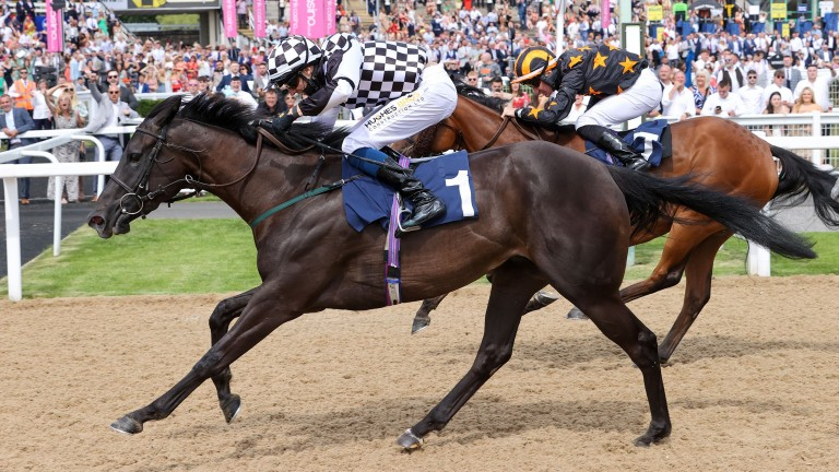 Miss Nay Never (Ben Robinson) strikes in the fillies' handicap