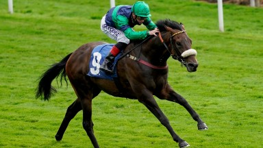 YORK, ENGLAND - AUGUST 21: Callum Rodriguez riding Brunch win The Sky Bet Mile Stakes at York Racecourse on August 21, 2020 in York, England. Owners are allowed to attend if they have a runner at the meeting otherwise racing remains behind closed doors to