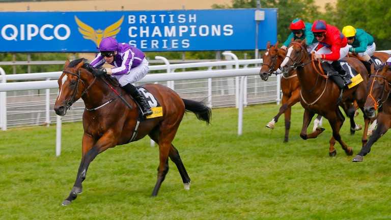 Highland Reel wins the 2014 Vintage Stakes