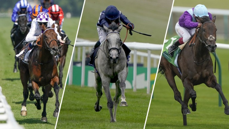 Poetic Flare (left) takes on Snow Lantern and Alcohol Free in Wednesday's Sussex Stakes