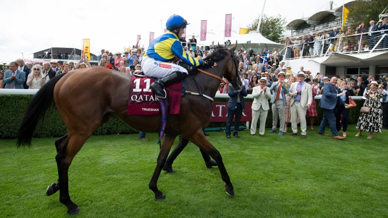 Trueshan and Hollie Doyle return after the winning the Goodwood Cup