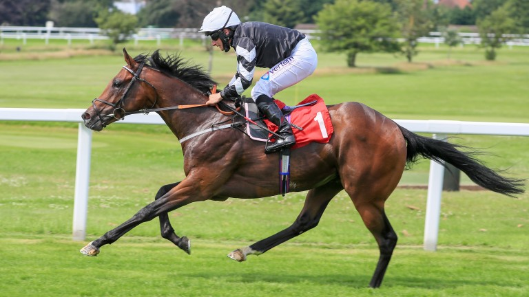 Fearby: Five-length winner of the Coral Dragon Stakes on good to soft ground