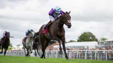 Alcohol Free (Oisin Murphy) win the Sussex StakesGlorious Goodwood 28.7.21 Pic: Edward Whitaker