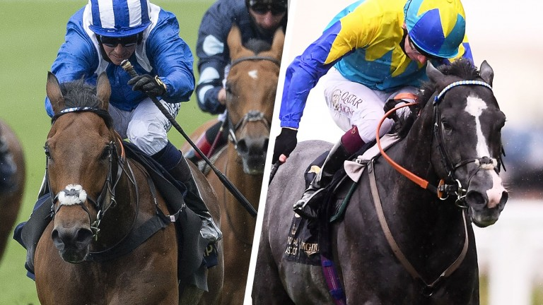 Battaash (left) faces a strong Group 2 King George field including Dragon Symbol (right)