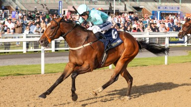 SALUTI (Paul Mulrennan) wins at NEWCASTLE 29/7/21Photograph by Grossick Racing Photography 0771 046 1723