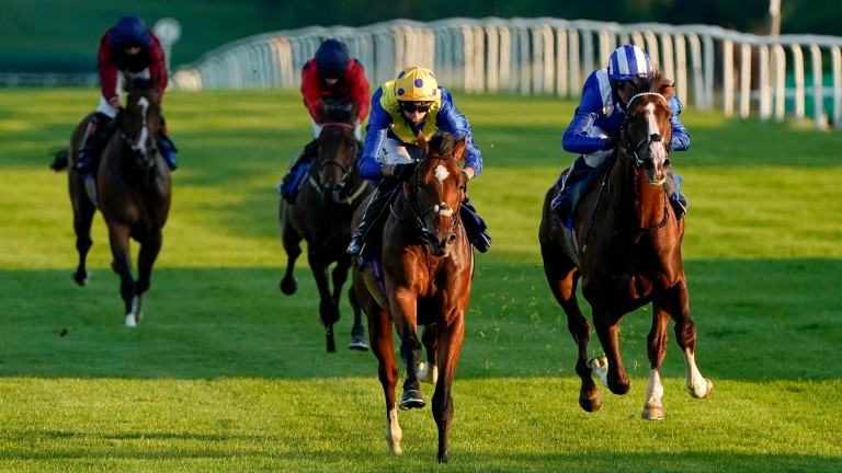 My Frankel heads to the Summer Handicap alongside stablemate Boss Power