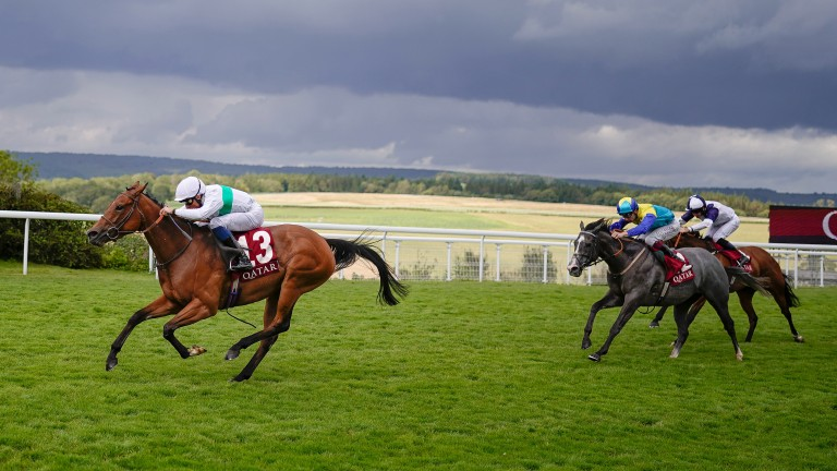 Dragon Symbol and Glass Slippers have nothing else to offer behind Suesa at Goodwood