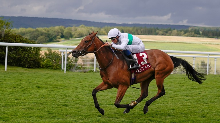 Suesa comes home a commanding three lengths clear in the King George Qatar Stakes