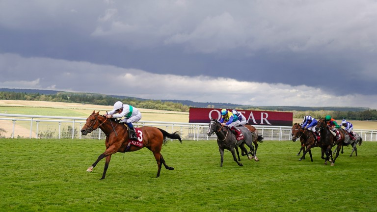 Suesa scorches to success in the King George Stakes at Goodwood