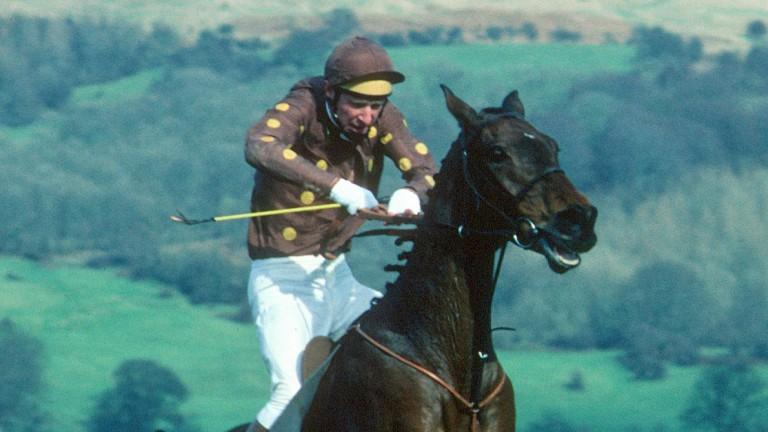 Brod Munro-Wilson and The Drunken Duck on their way to Cheltenham glory in 1982