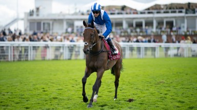 Battaash (Jim Crowley) go to post for the King George StakesGoodwood 29.7.21 Pic: Edward Whitaker