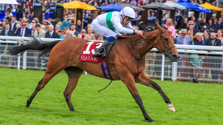 """Suesa a """"a nice filly with a good attitude"""" as a foal says Peter Kelly"""