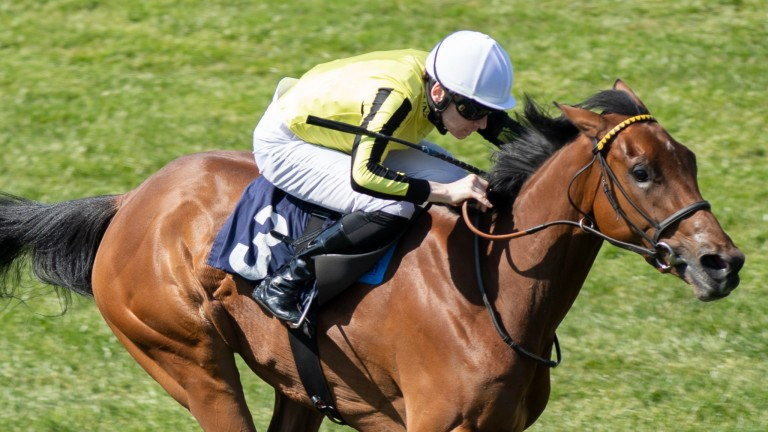 Save A Forest secured a first Listed win in the Chalice Stakes