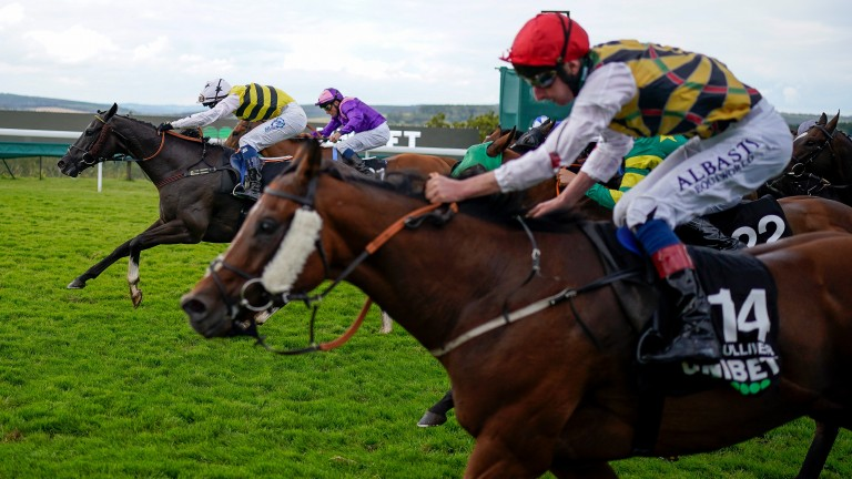 Commanche Falls (centre) beats Gulliver (near) in a close finish to the Stewards' Cup