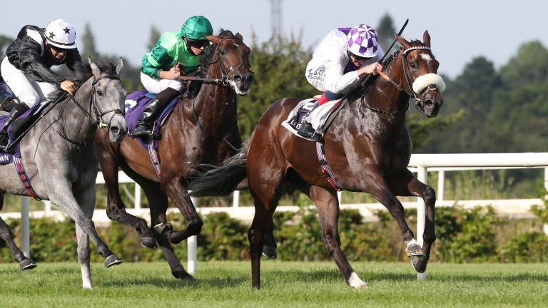 Stone Age (green): has an entry in the Group 2 Futurity Stakes at the Curragh this month