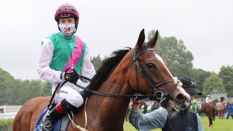Sacred Bridge: Bated Breath full-sister to Viadera and winner of the Ballyhane Stakes at Naas