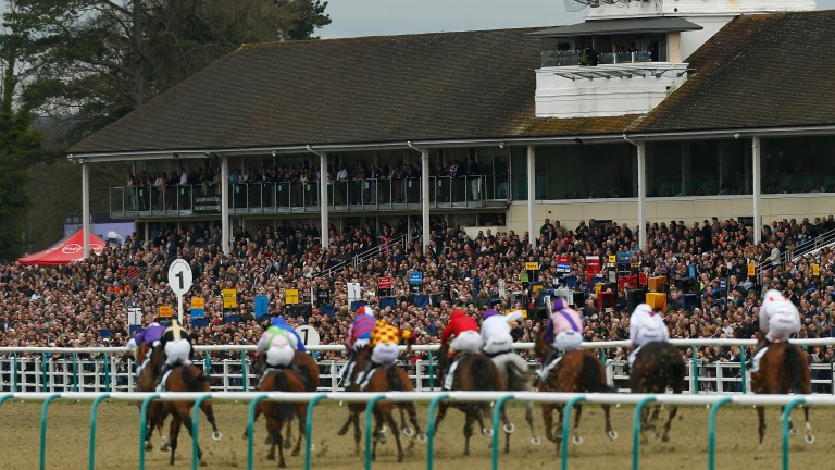 Lingfield: attracted a large crowd on Saturday