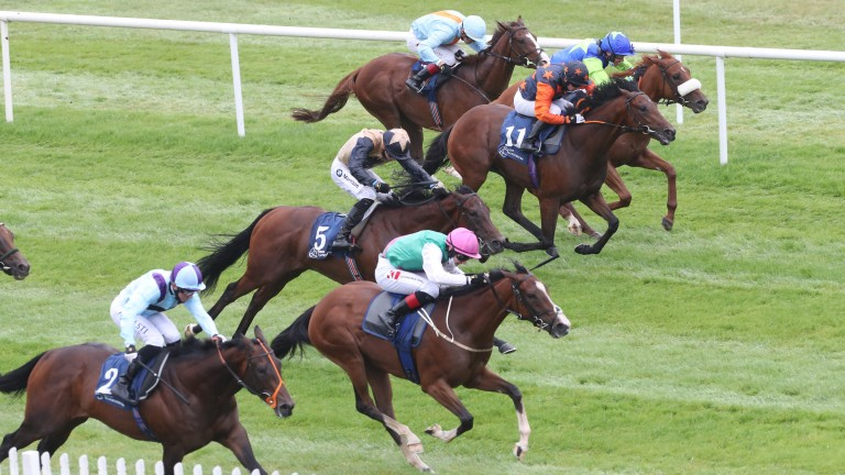 Sacred Bridge (pink cap) proved herself a classy prospect when winning the Ballyhane Stakes