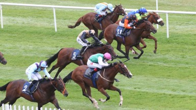 Sacred Bridge (pink hat): class came to the fore at Naas