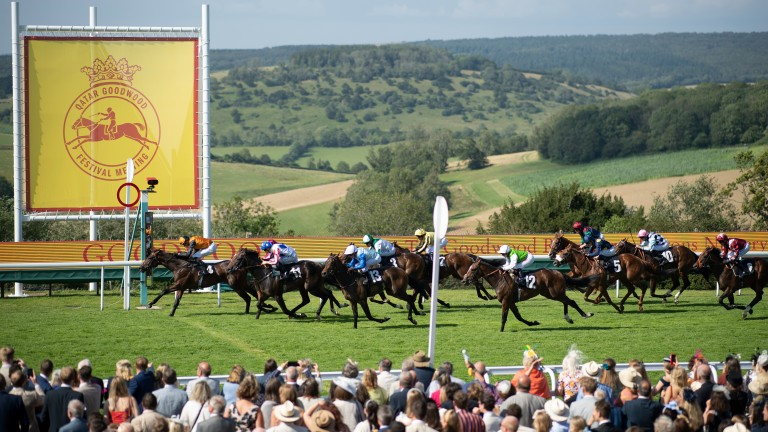 Aswan wins the 7f nursery at Goodwood on Thursday, a race in which Aldbourne finished seventh