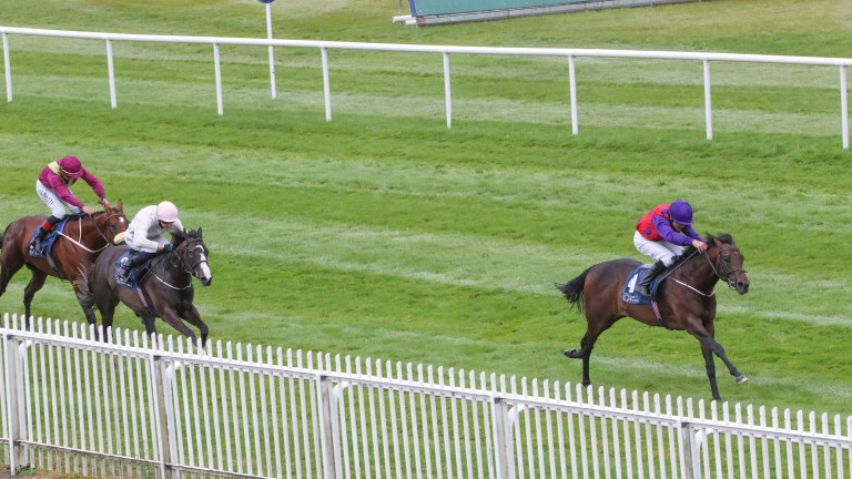 Cavalry Charge was far too good for his rivals in the Silver Ballyhane