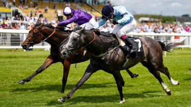 NEWBURY, ENGLAND - JUNE 10: Jack Mitchell riding Great Max (L, purple) win The Betfair Racing...Only Bettor Podcast Novice Stakes at Newbury Racecourse on June 10, 2021 in Newbury, England. Due to the Coronavirus pandemic, only owners along with a limited