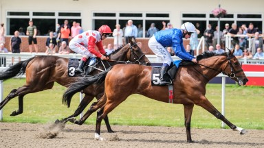 With The Moonlight and Jim Crowley The tote Placepot your first bet Maiden Fillies' StakesChelmsford City RacecourseMegan Ridgwell03.07.21