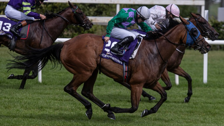 Cactus Tree and Wayne Lordan get up late to land the 7f handicap at Leopardstown