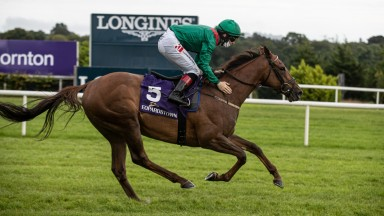 """Keane on Tarnawa: """"She has done very well over the winter. Probably better than they'd have thought, as she's taken a bit of work to get her where she is now."""""""
