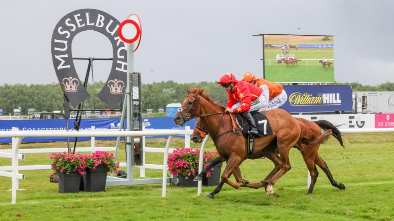 Wise Eagle makes it six wins in 2021